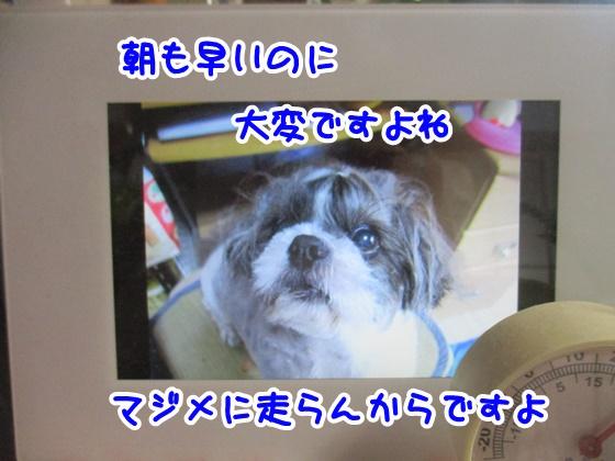 0820-08_20180820185711cf9.jpg