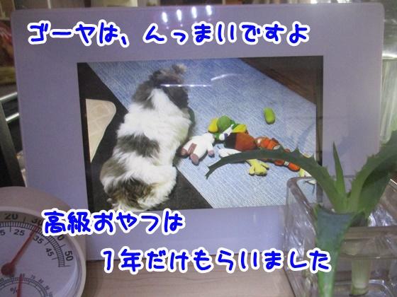 0830-01_20180830150041ef0.jpg