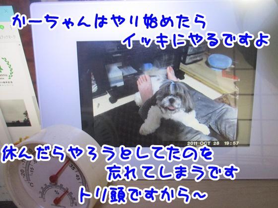 0915-07_20180915151959a9c.jpg