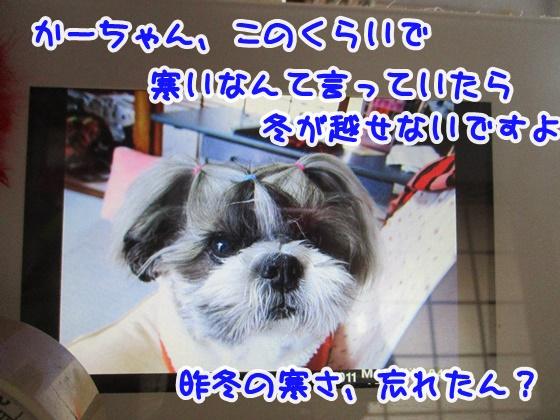 1012-10_20181012150307b6c.jpg