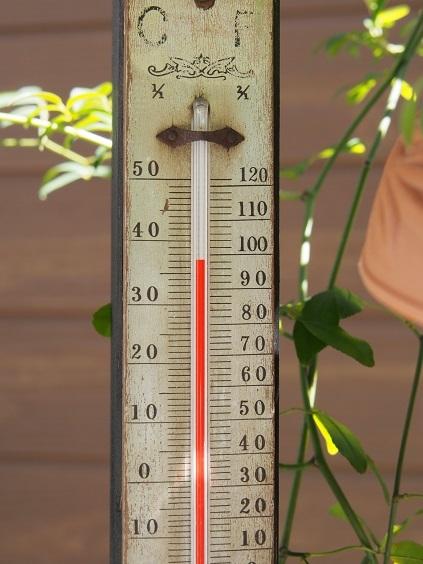 P8220006 この暑さ