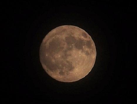 P9241344 中秋の名月