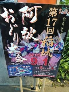 第17回阿波踊り_01