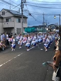 第17回阿波踊り_03