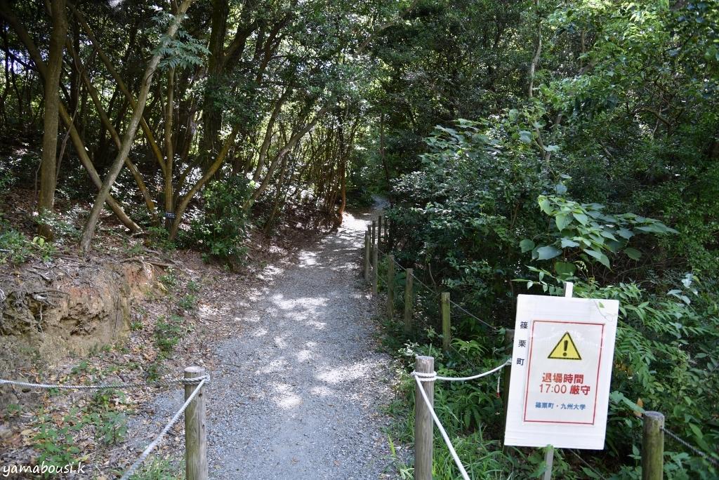 篠栗九大の森の散策 DSC_1922k