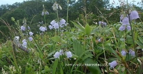 プライベート(唐松岳) 103-002