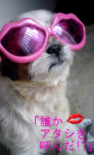 moblog_abe939c1.jpg
