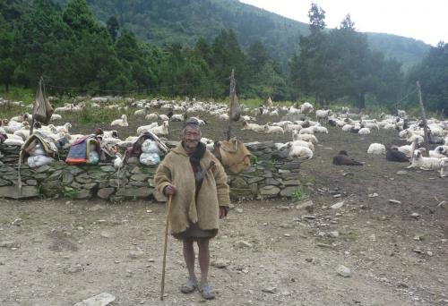 180910山羊飼い