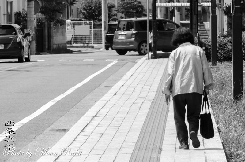 歩く 御殿前通り 愛媛県西条市明屋敷