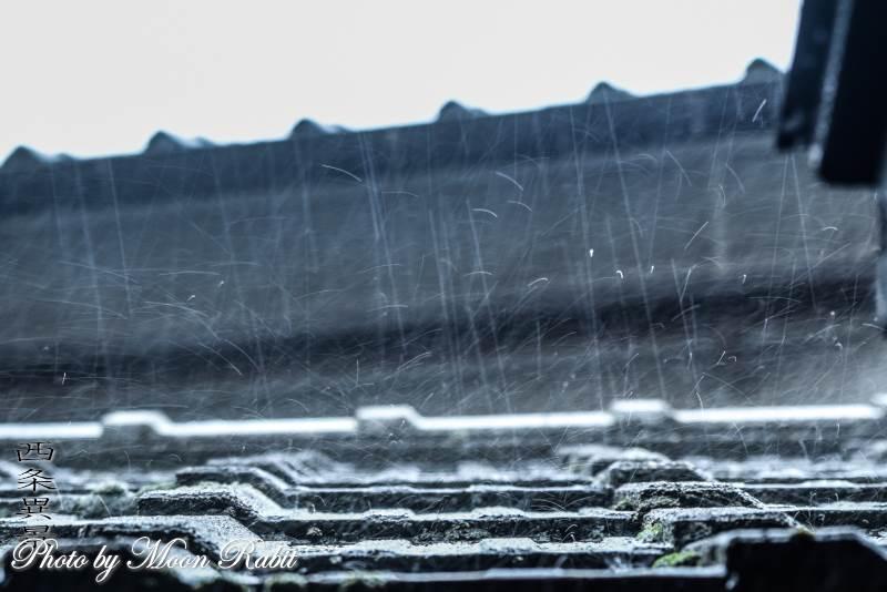 台風24号の雨 愛媛県西条市西新町