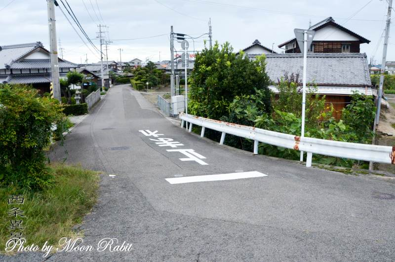 稲田と家並み 愛媛県西条市川北