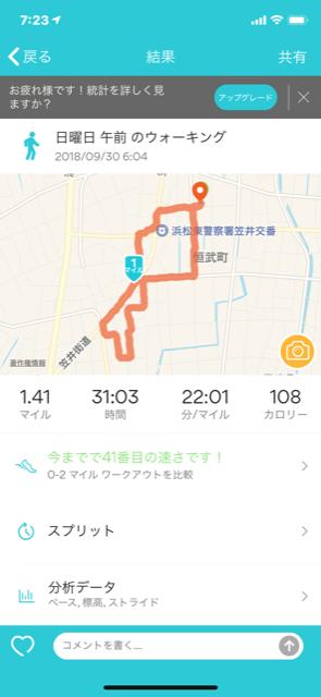 散歩 日曜日の朝