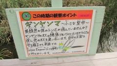 kitamoto180812-201.jpg