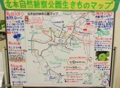 kitamoto180812-202.jpg
