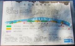 mizumoto180818-201.jpg