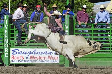 blog (6x4@300) Yoko 76 Livermore, Bull Riding 5, Chadd Ellison (NS Porterville, NV)_DSC8024-6.10.17.(3).jpg