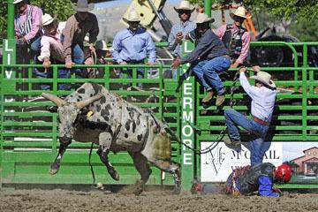 blog (6x4@300) Yoko 76 Livermore, Bull Riding 4, Money Crist (NS Reno, NV)_DSC8019-6.10.17.(3).jpg