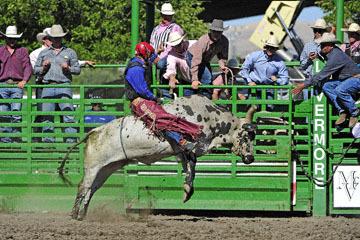 blog (6x4@300) Yoko 76 Livermore, Bull Riding 4, Money Crist (NS Reno, NV)_DSC8016-6.10.17.(3).jpg