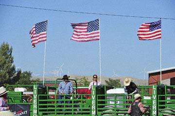 blog (6x4@300) Yoko 76 Livermore, Bull Riding 5, Chadd Ellison (NS Porterville, NV)_DSC8036-6.10.17.(3).jpg