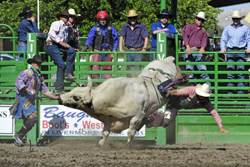 blog (6x4@300) Yoko 76 Livermore, Bull Riding 5, Chadd Ellison (NS Porterville, NV)_DSC8027-6.10.17.(3).jpg