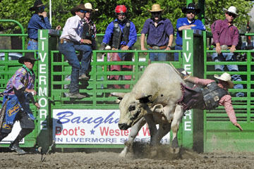 blog (6x4@300) Yoko 76 Livermore, Bull Riding 5, Chadd Ellison (NS Porterville, NV)_DSC8026-6.10.17.(3).jpg