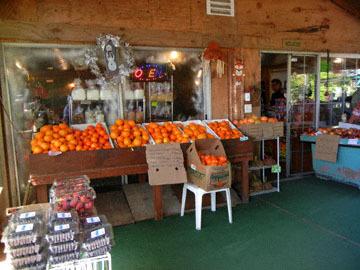 blog CP2 Lunch, Farm   Fruit Shop, Bakersfield, CA_DSCN8501-4.8.18.jpg