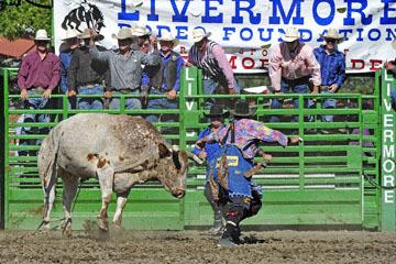 blog (6x4@300) Yoko 76 Livermore, Bull Riding 6, Jake Peterson (NS Livermore, CA)_DSC8048-6.10.17.(3).jpg
