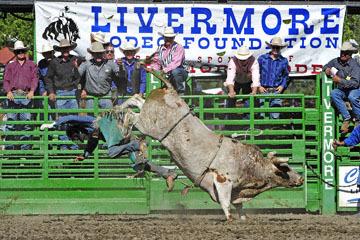 blog (6x4@300) Yoko 76 Livermore, Bull Riding 6, Jake Peterson (NS Livermore, CA)_DSC8046-6.10.17.(3).jpg