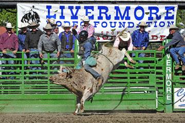 blog (6x4@300) Yoko 76 Livermore, Bull Riding 6, Jake Peterson (NS Livermore, CA)_DSC8042-6.10.17.(3).jpg