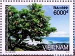 ヴェトナム・チュンオンサ諸島の植物