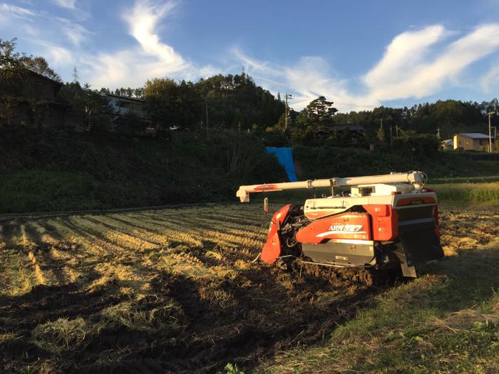 農繁期 2018 秋 コシヒカリ稲刈り コンバイン 1