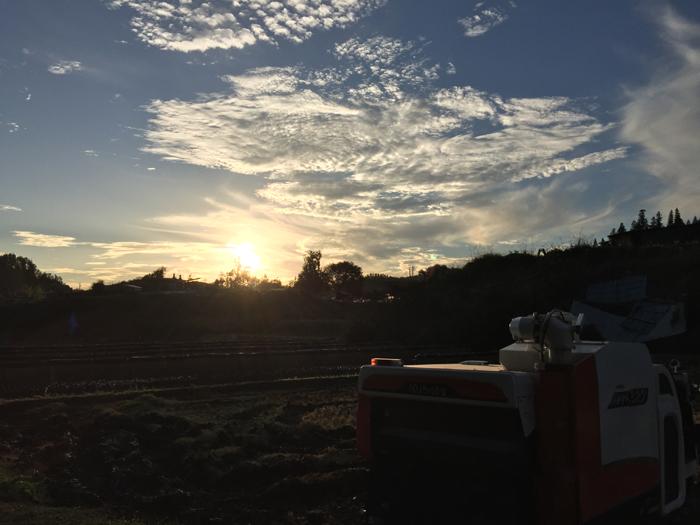 農繁期 2018 秋 コシヒカリ稲刈り コンバイン 2