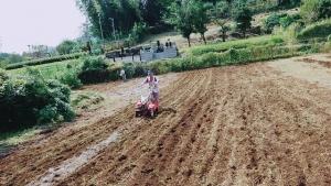 畑の掘り起こし