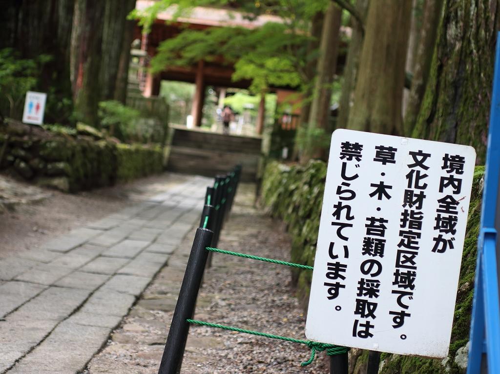 yuru0224.jpg